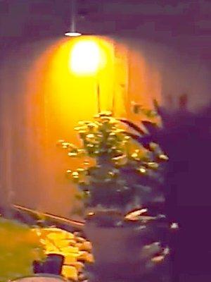Cистемы освещения сада и дома в Алматы
