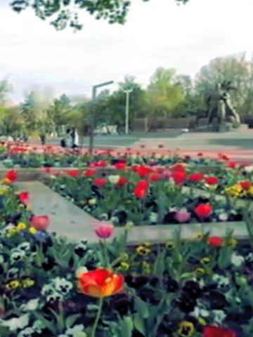 Ландшафтный дизайн в Алматы
