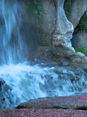 создание искусственных водоёмов и прудов в Алматы